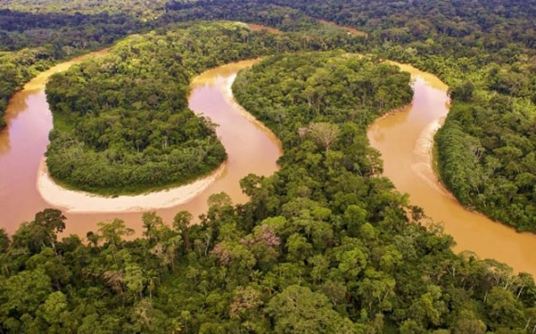 Travelling The Majestic Amazon River