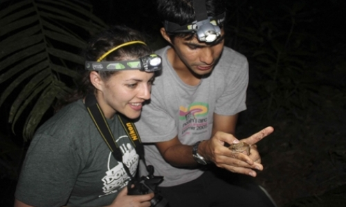 Amphibian Conservation Volunteer Program
