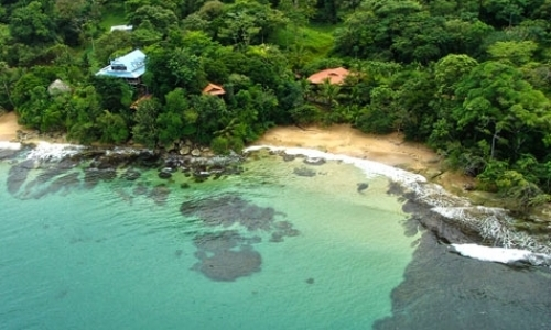 Volunteer at Beachfront Eco-Lodge or Permaculture Project