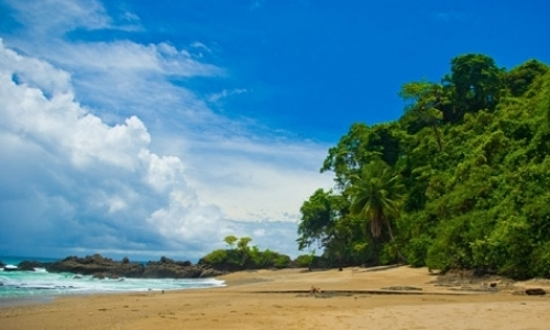 Volunteer at Surf Camp in Costa Rica